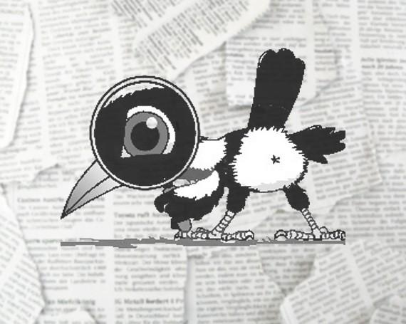 Townsville Magpie